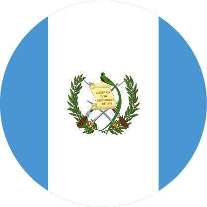 Maestría en Intervención en Dificultades del Aprendizaje Guatemala