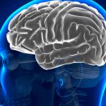 ¿Qué ocurre cuando hay lesión en hemisferio cerebral izquierdo?