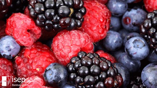 Alimentos que previenen el Envejecimiento Cerebral
